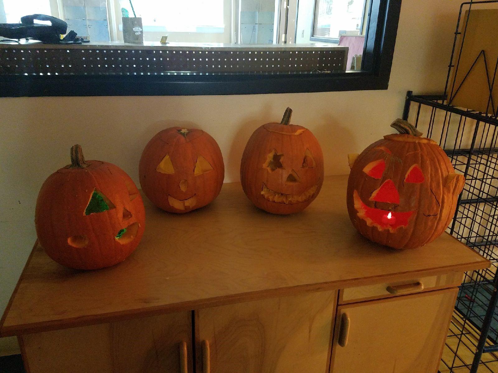 carved pumpkins 4.jpg