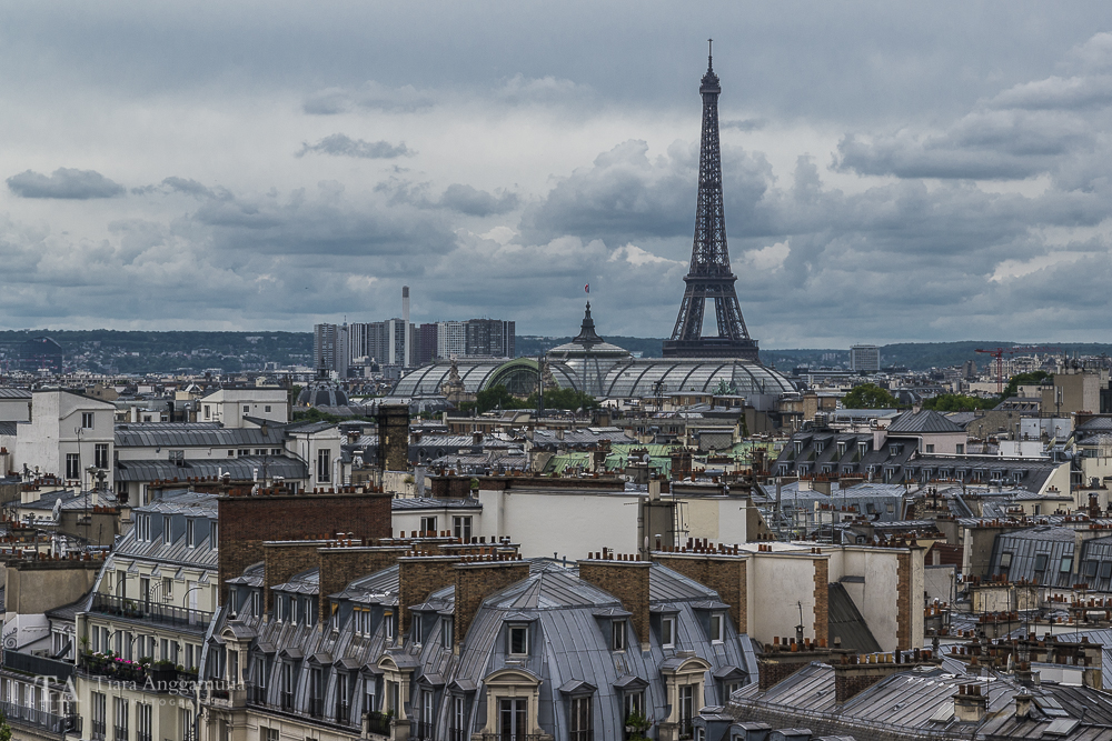 The rooftops of Paris viewed from Printemps.