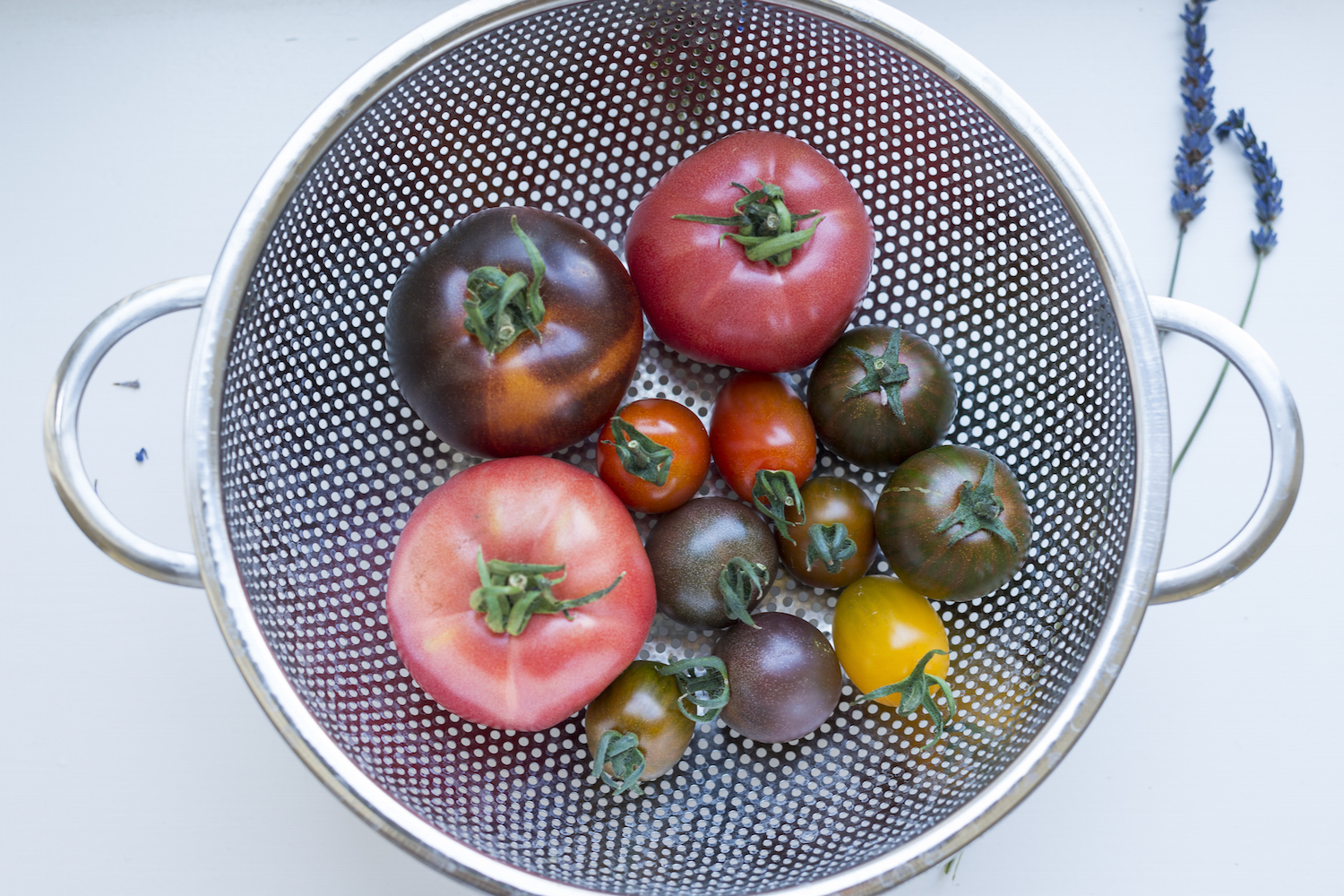 Colourful tomatoes from the farmers market.jpg