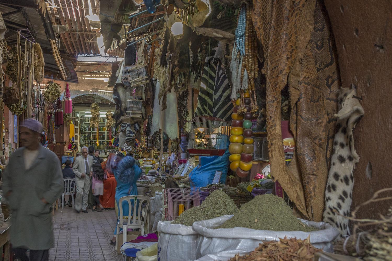 Inside the souks in Marrakech.jpg
