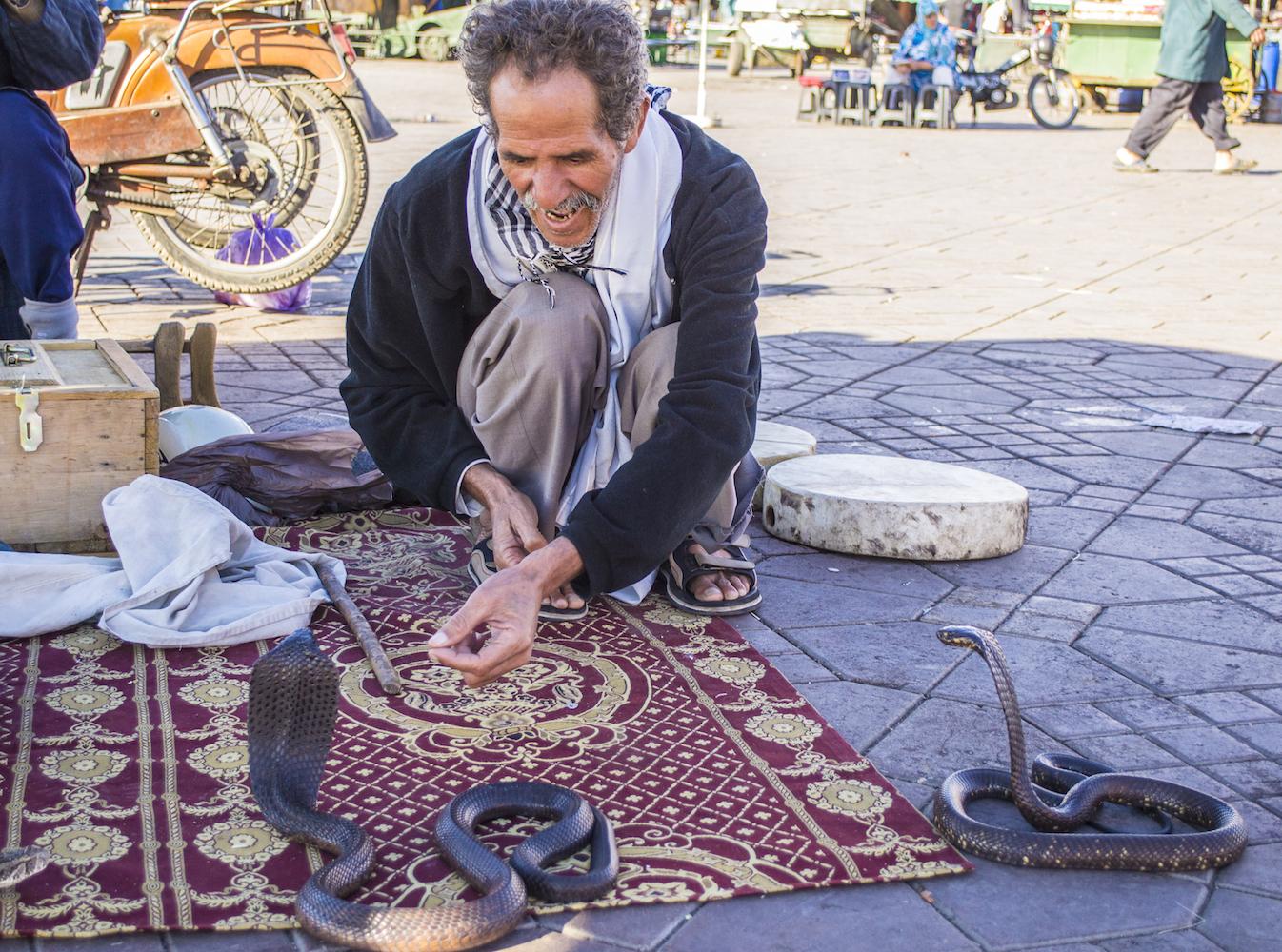 Snake charmers in Jemaa el Fna Square.jpg