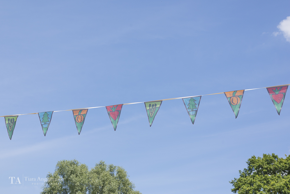 Colourful bunting flags at Crockford Bridge Farm.