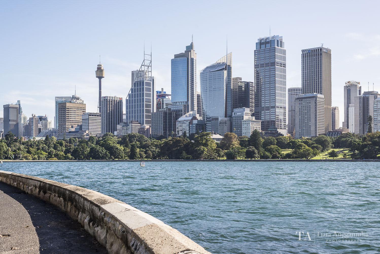The Sydney skyline.