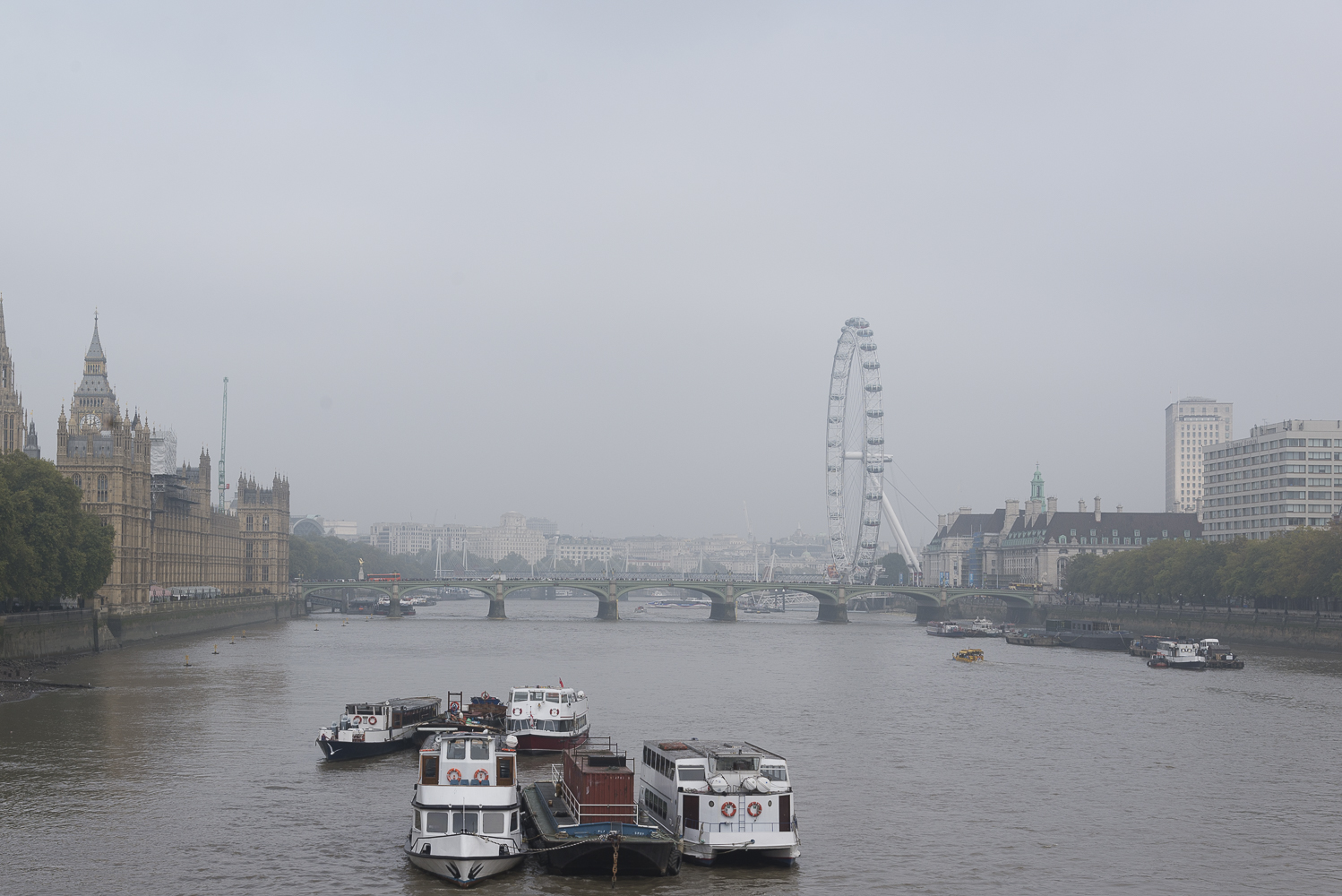 A foggy morning in London.jpg