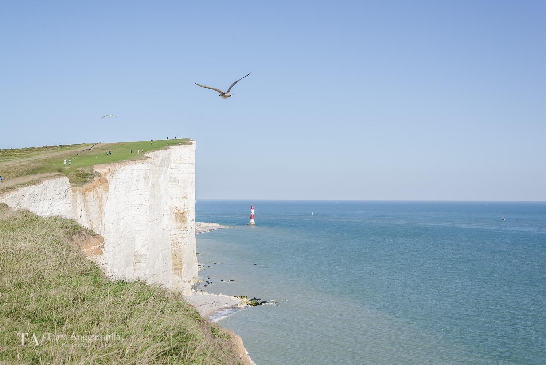 A view towards the Beachy Head Lighthouse.