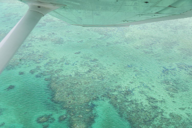 Great Barrier Reef 2.jpg