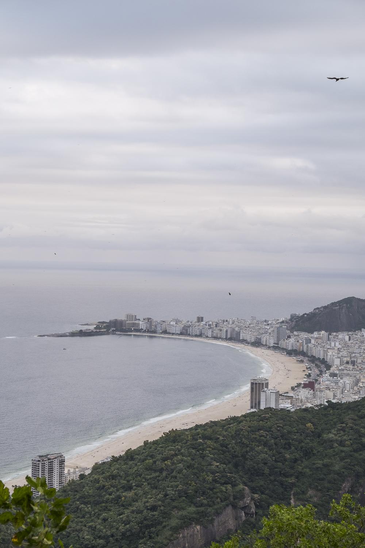 Rio 11.jpg