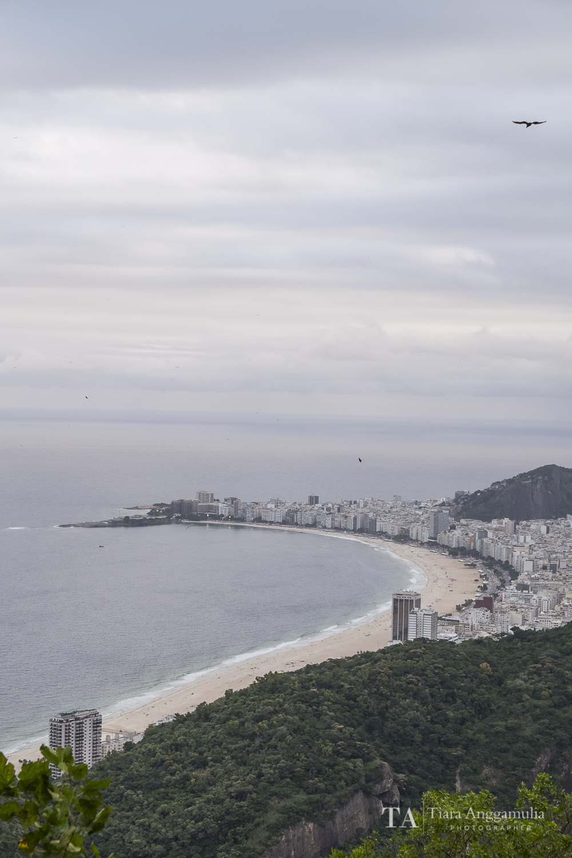Rio 004.jpg