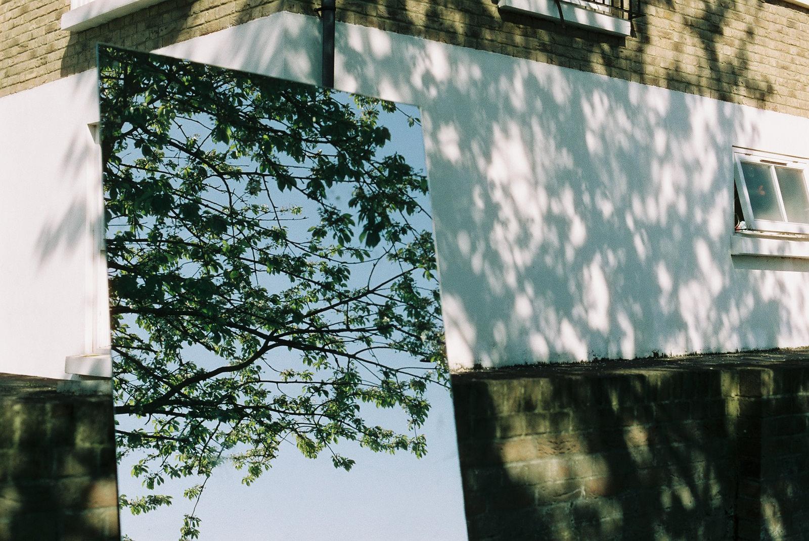 Mirror garden, SE20