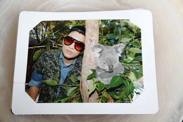 koala_encounter_bryanboy1.jpg