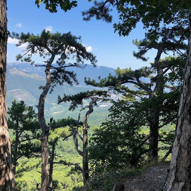 Красивый свет, чудесная природа, удивительные виды и чистый воздух с ароматом хвои☺️