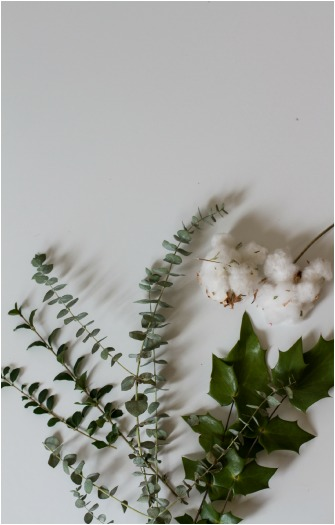 So, florals. My new obsession for everything, especially gifts. I buy some from fancy floral shops, some from Kroger, and then I just find some in my backyard. Eucalyptus, Holly, Cotton, and Baby's breath are my faves. :)