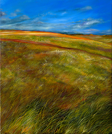 South Dakota Grasslands