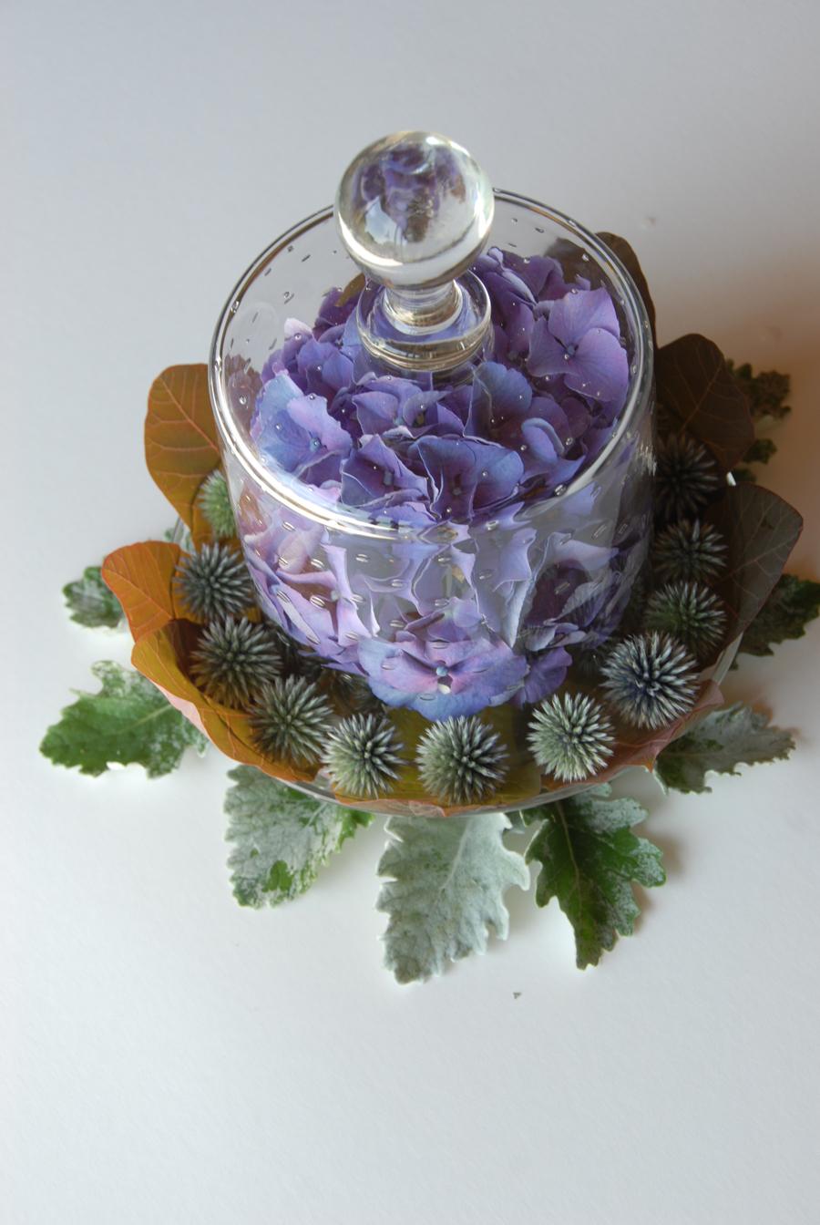 Urban Botanical 012 email.jpg