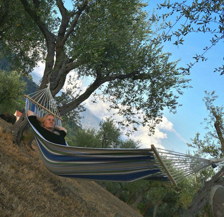 the hammock and di.jpg
