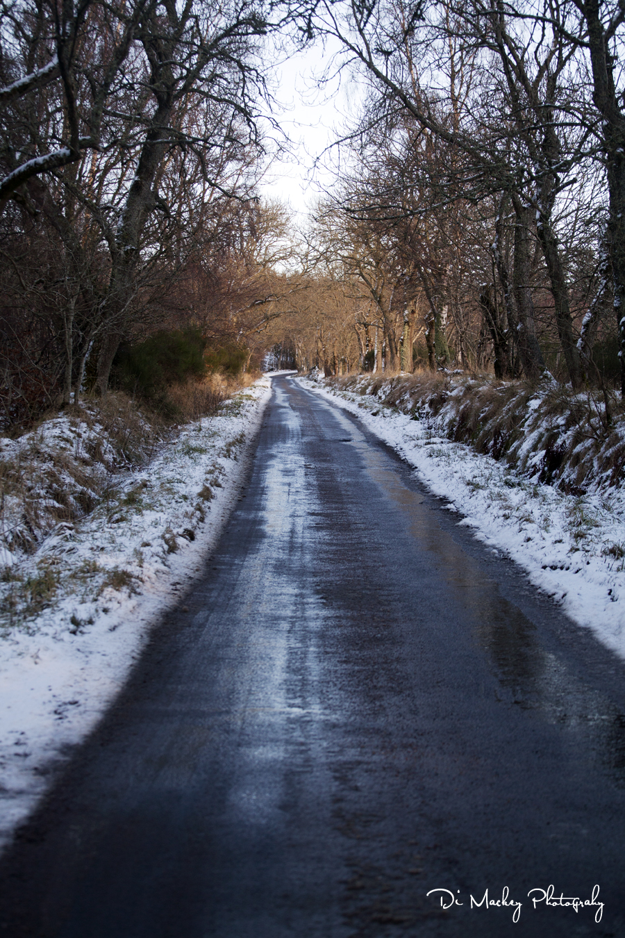 the road, scotland.jpg