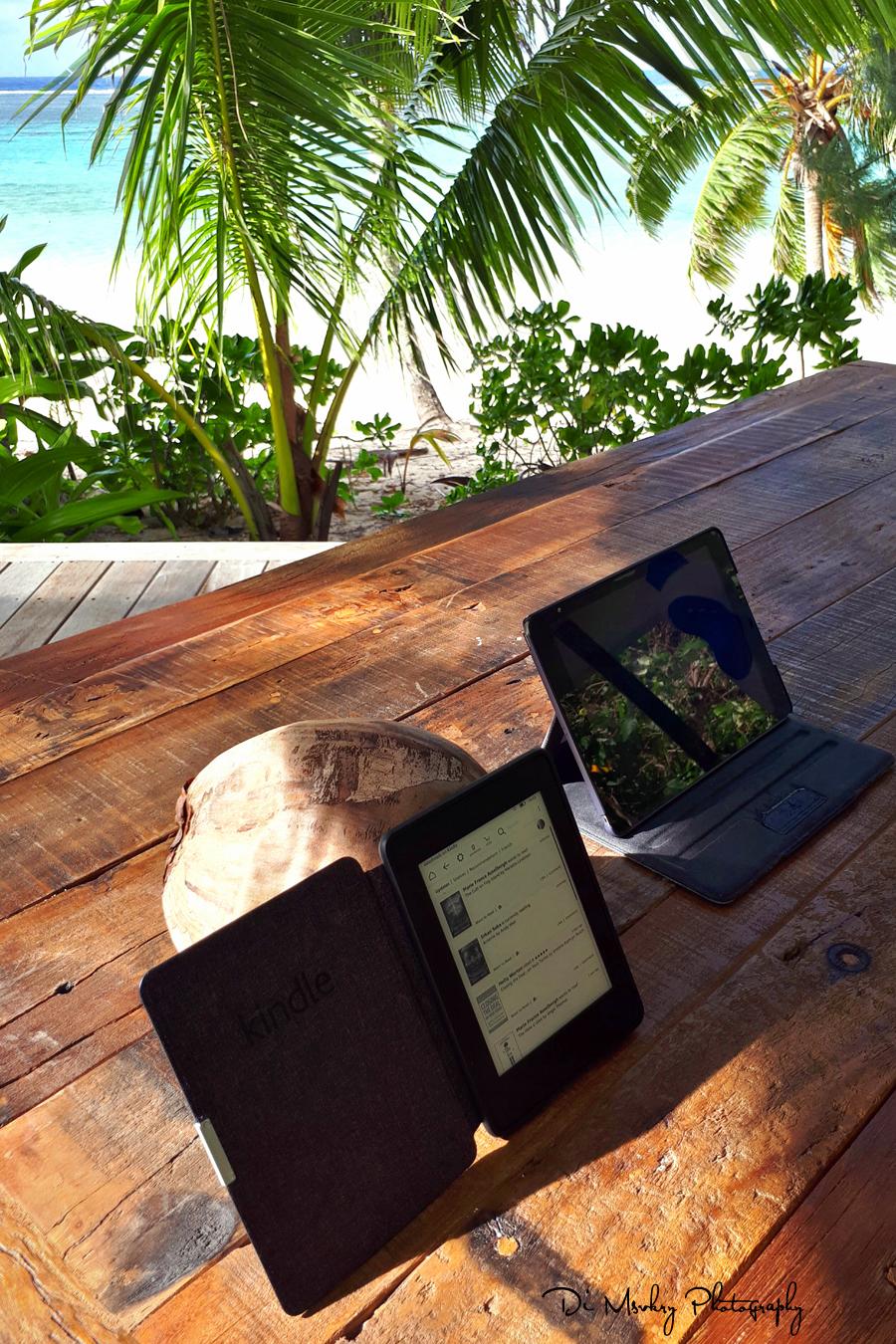 coconut kindle stand, rarotonga.jpg