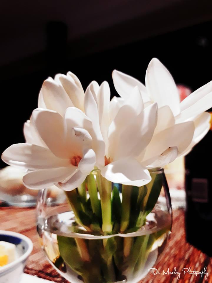 tiare flower.jpg