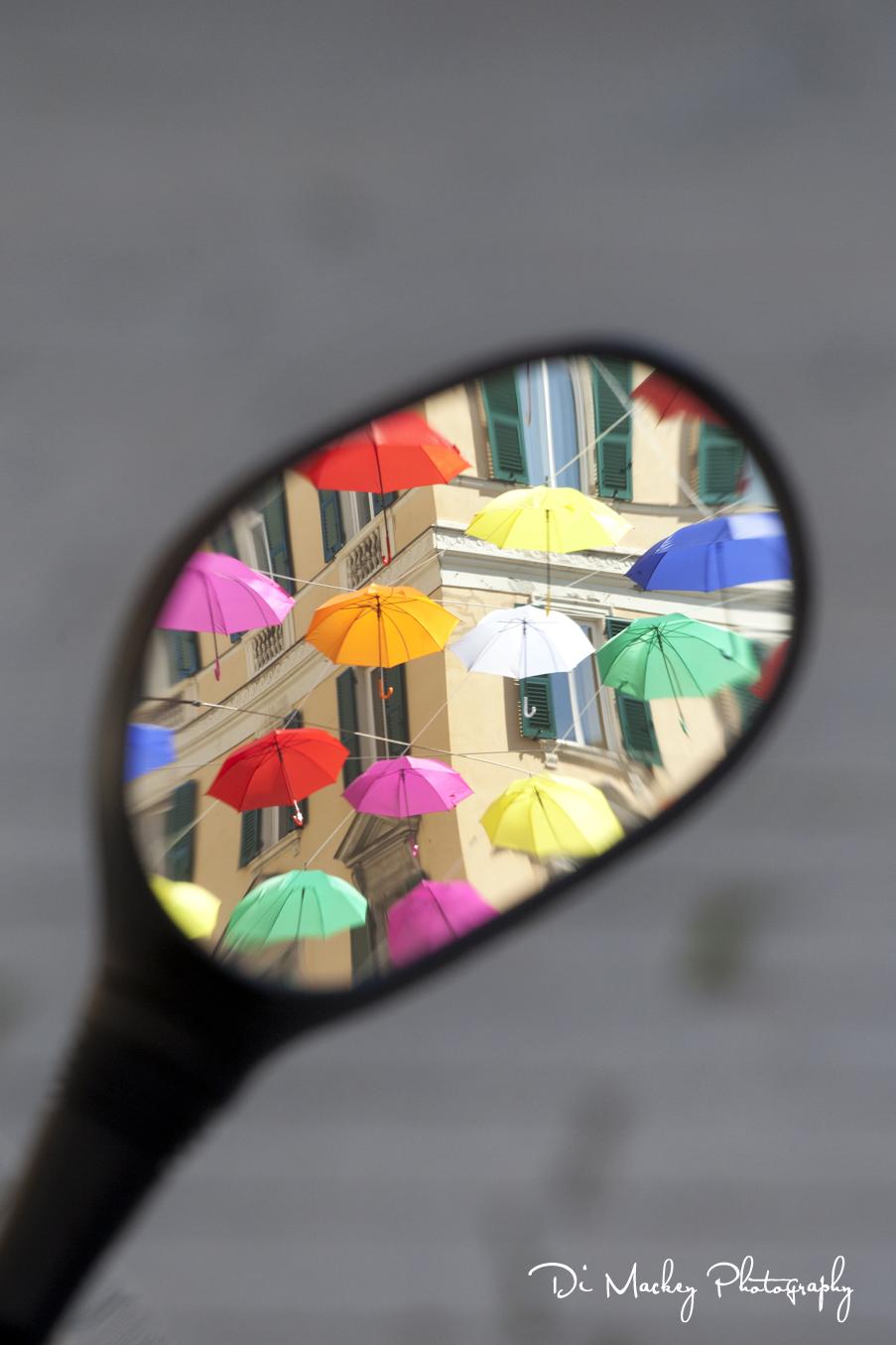 not the umbrellas .jpg