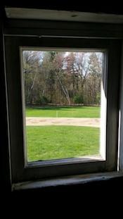 Birches through Frost Barn Window.jpg