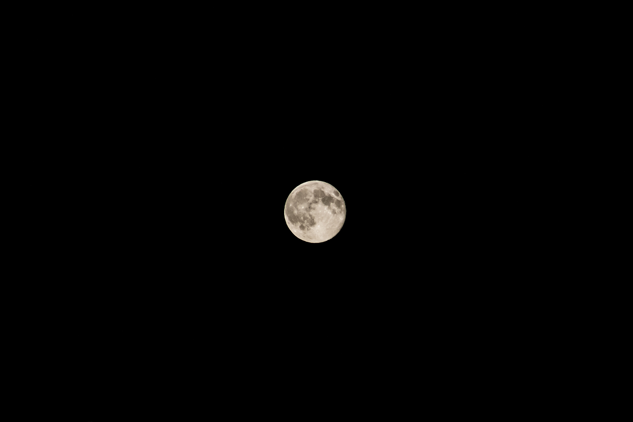 f/5.6 1/200 ISO400 @ 200mm | Plain and simple.