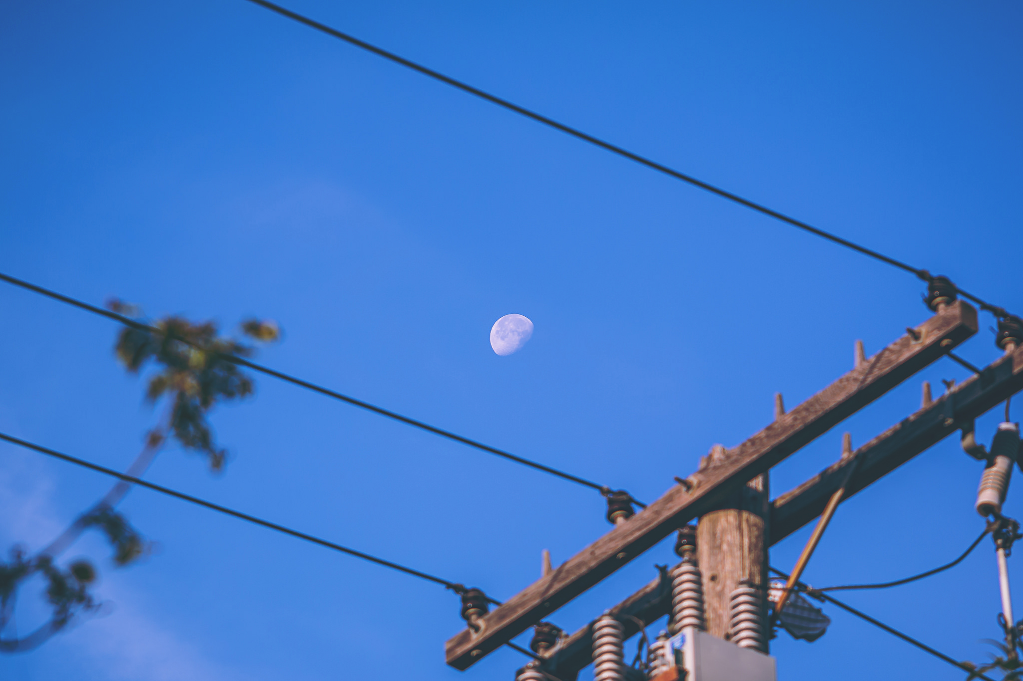 Shooting the moon in the morning, on the way to work in downtown REgina
