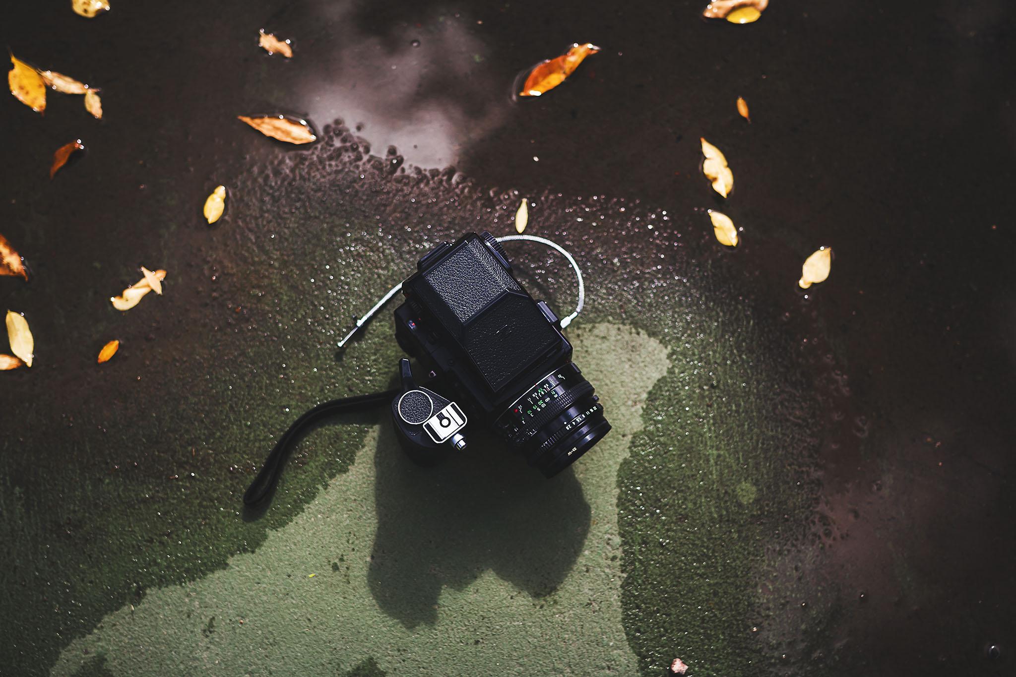 Monica, the Bronica (ETRSi) Kodak Ektar 100