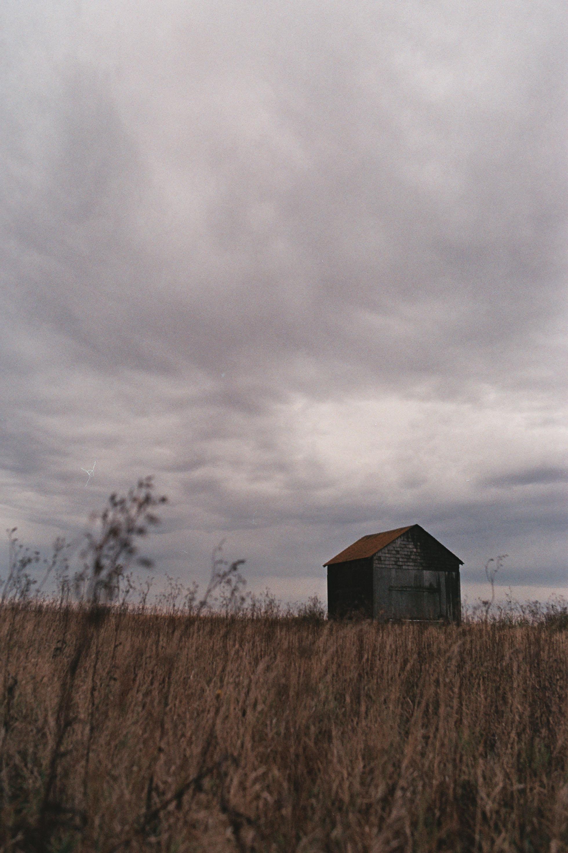 That Roof Though   Rural Saskatchewan   Canon Elan II   Sigma 35 1.4 ART   AGFA Vista Plus 200