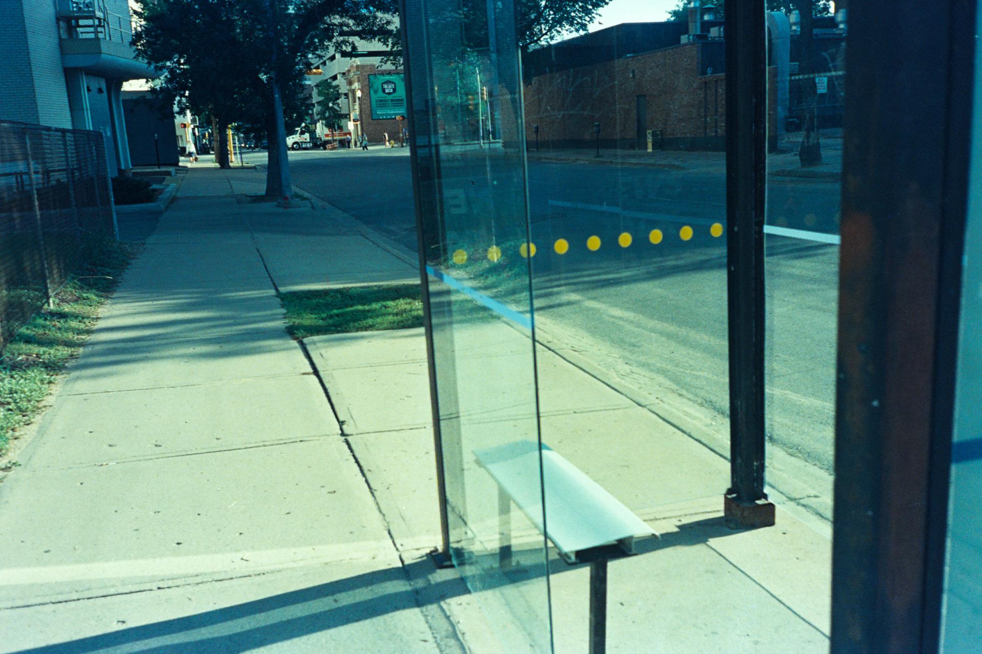 Hamilton Street Bus Stop