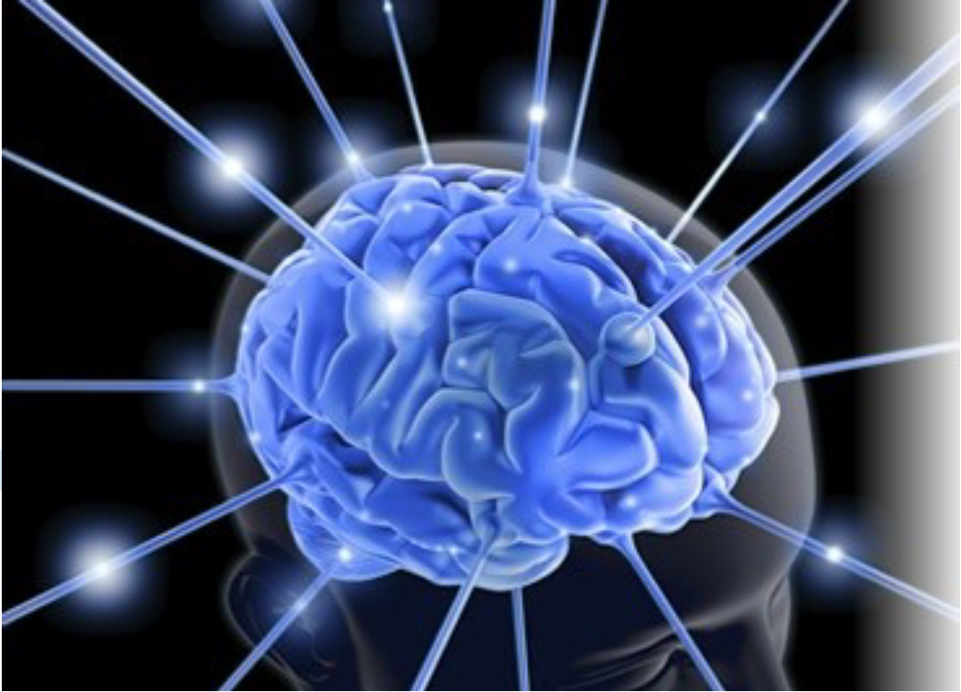 NeuroFeedback.PNG