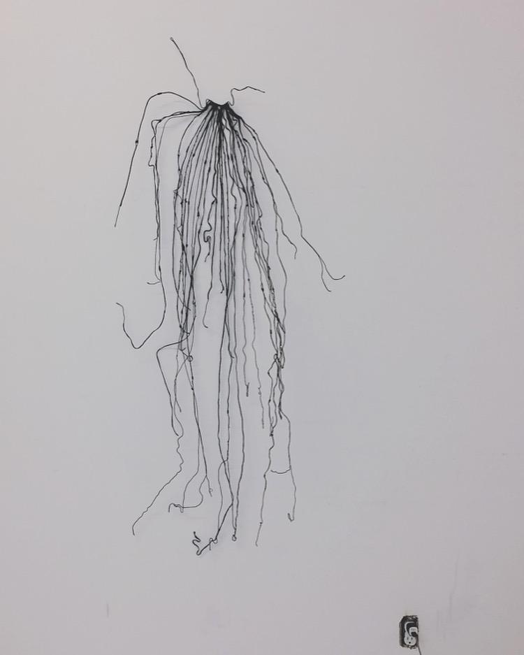 monica-hofstadter-quipu-veil.JPG