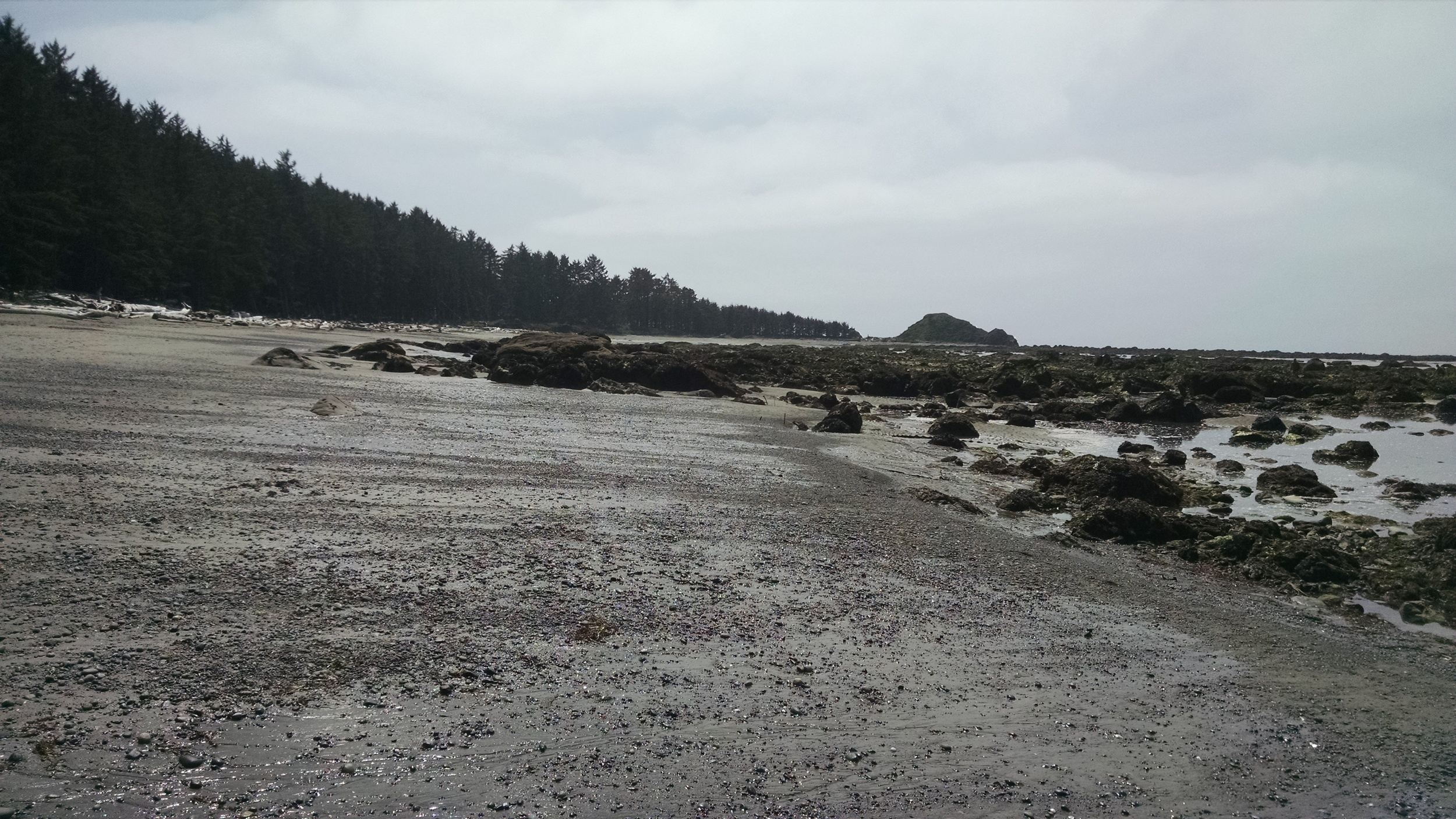 The wild Pacific coast