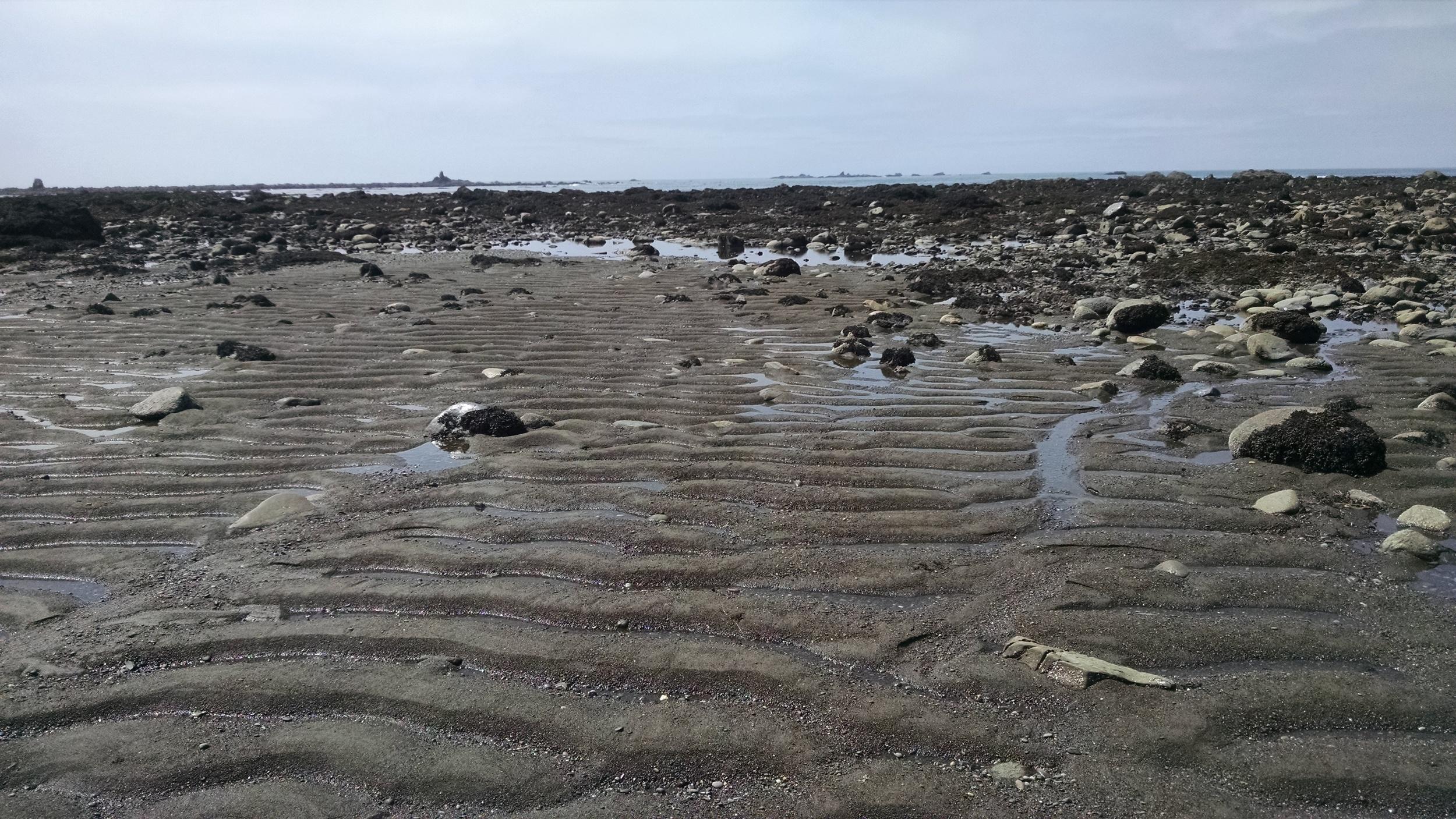 Strewn with rocks