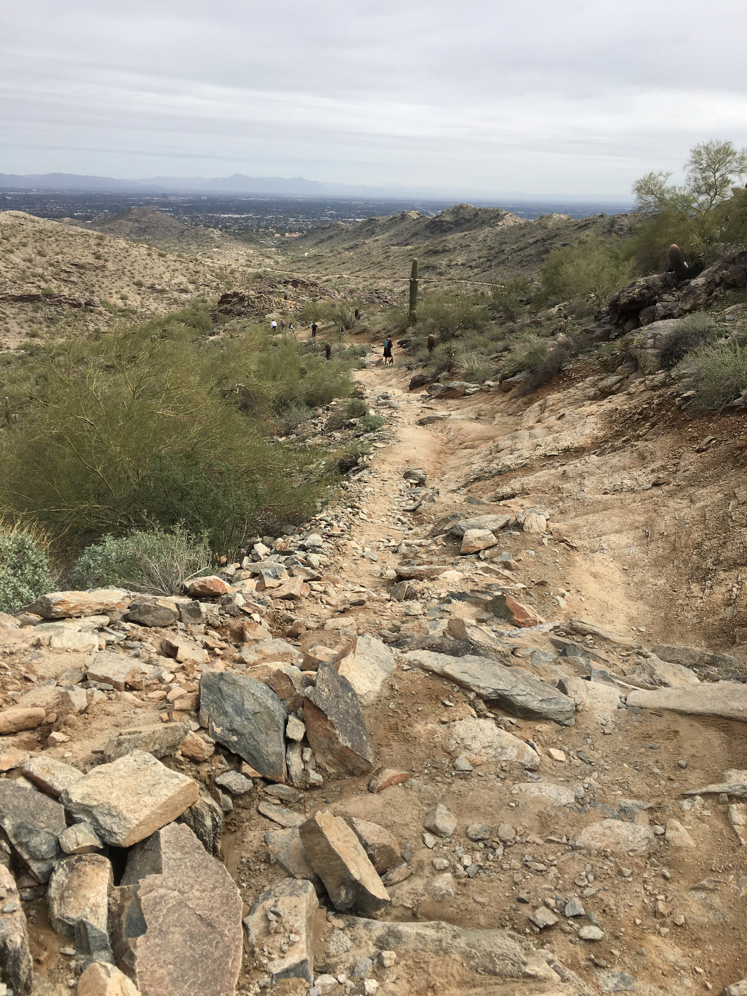 The trail is pretty rocky, which adds to the fun of it. There's uphill and downhill portions, but it really isn't THAT bad.