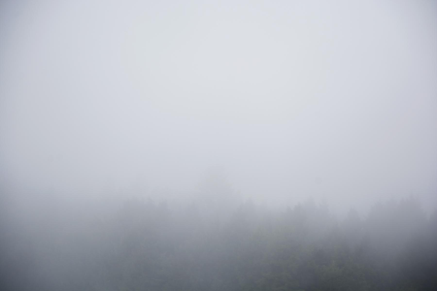 fog_E159514.jpg