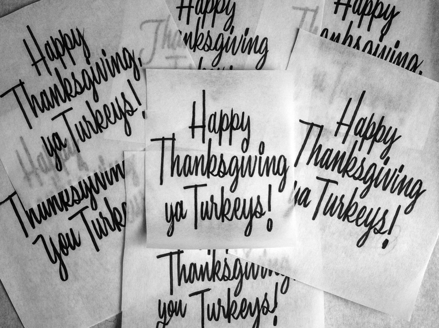 112316_ThanksgivingTurkeys.jpg