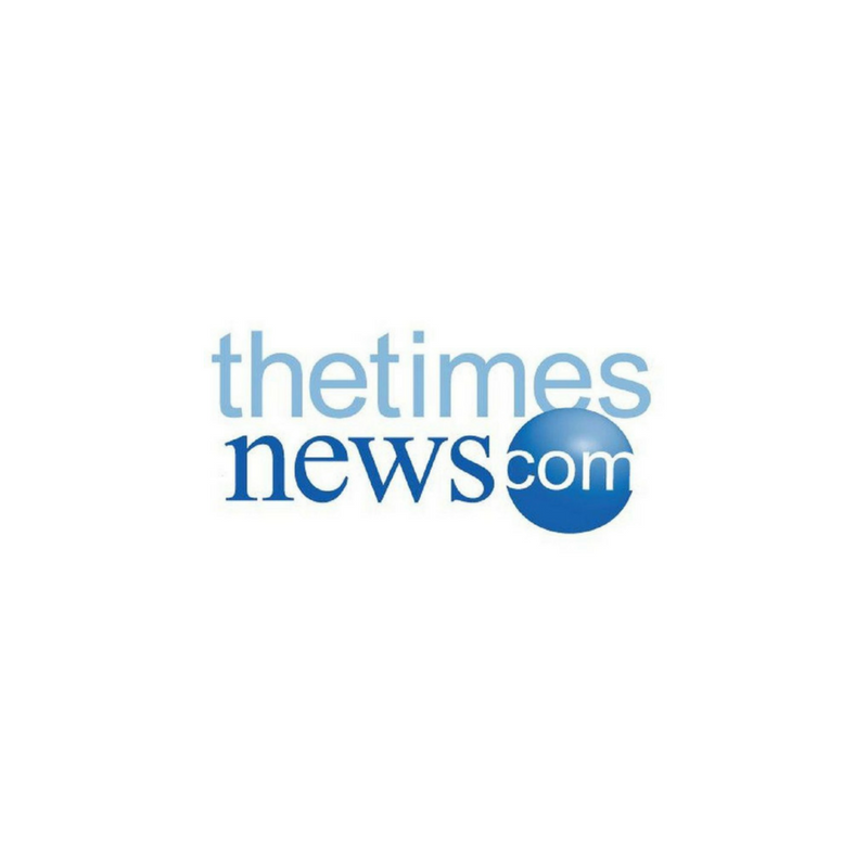 The Times News Logo