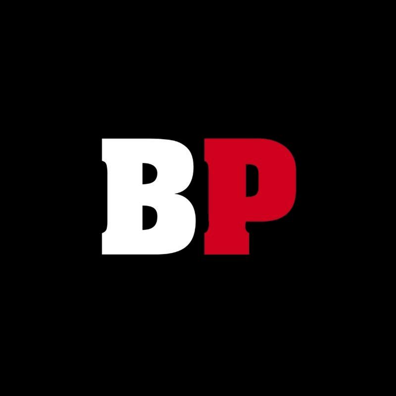 BeerPulse Logo