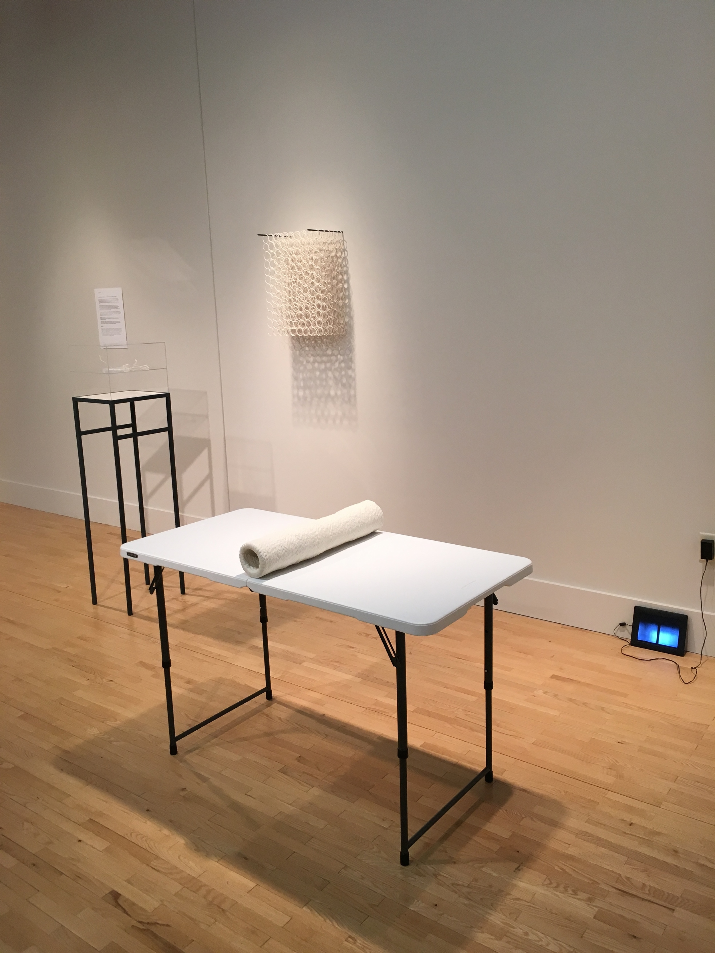 untitled : part of an invitational exhibition titled  Drawn | Dredged , at the Federal Gallery, Kendall College of Art and Design, Grand Rapids, MI.