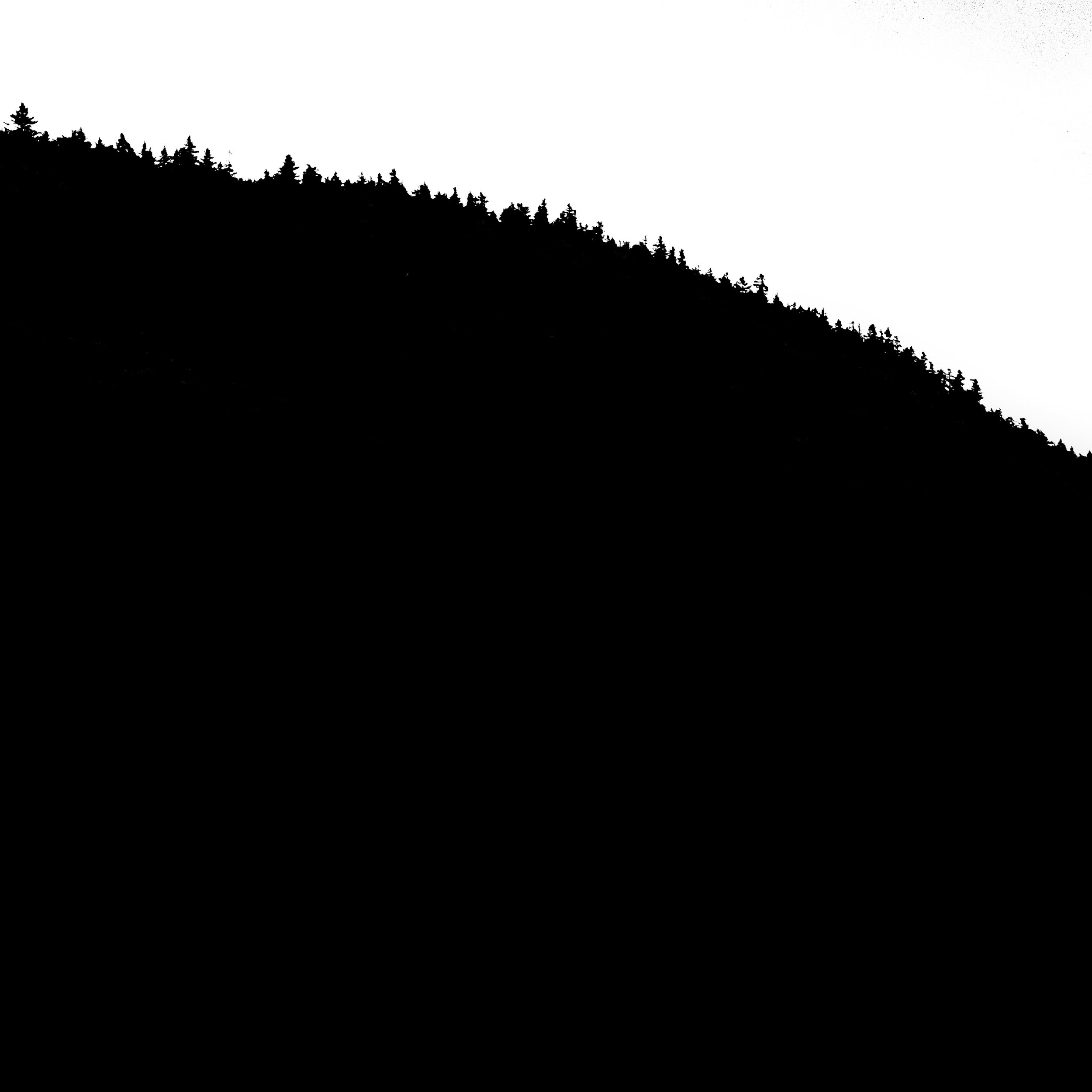 Mervis-21.jpg