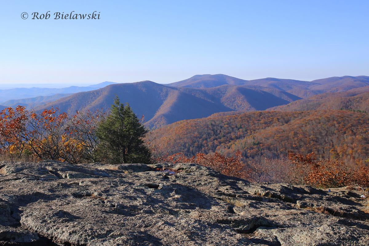 Atop Spy Rock outside Montebello, Virginia where moments earlier me & Ruth got engaged!