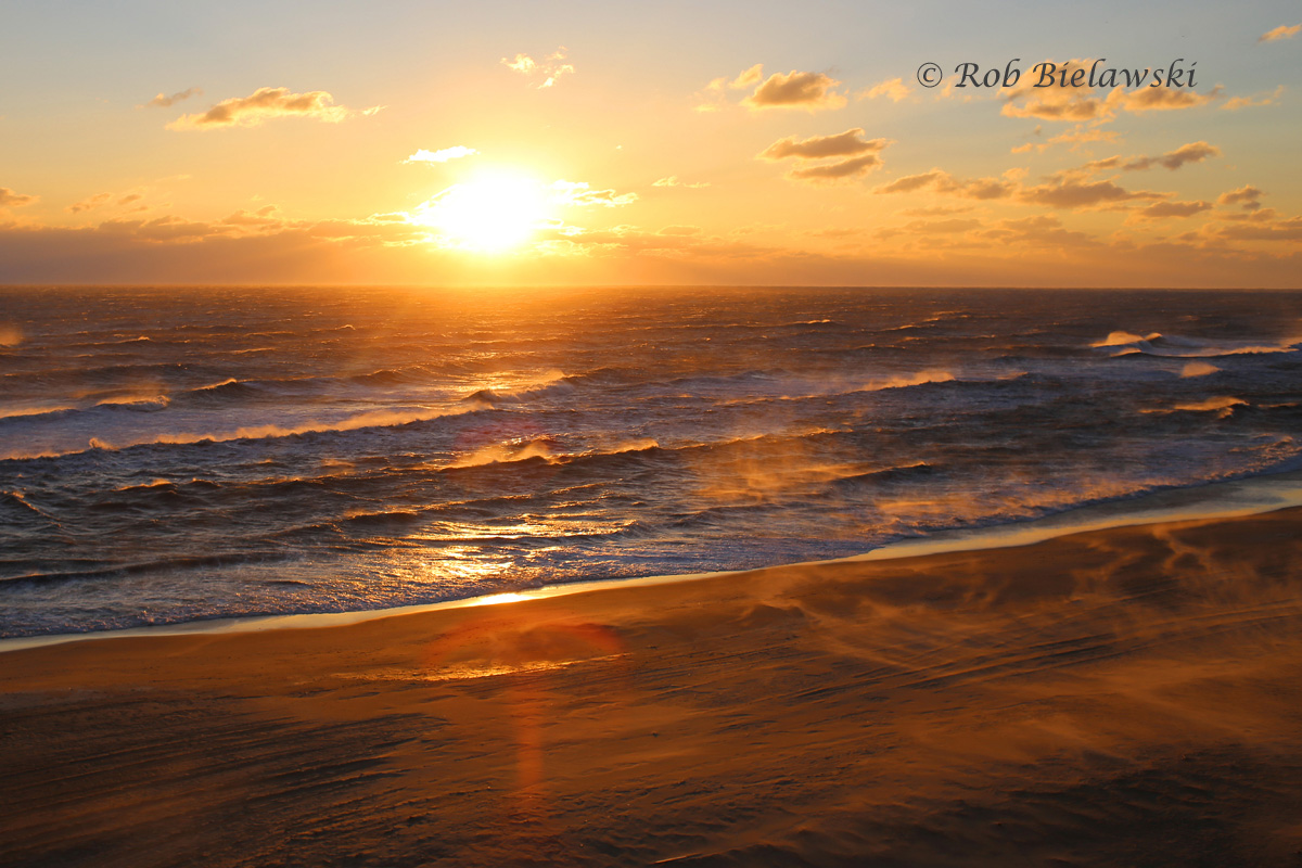 Sunday morning's sunrise was even grander than Saturday's from the hotel room, as 30+ mph winds whipped up the ocean waves and sent sand blowing in all directions!