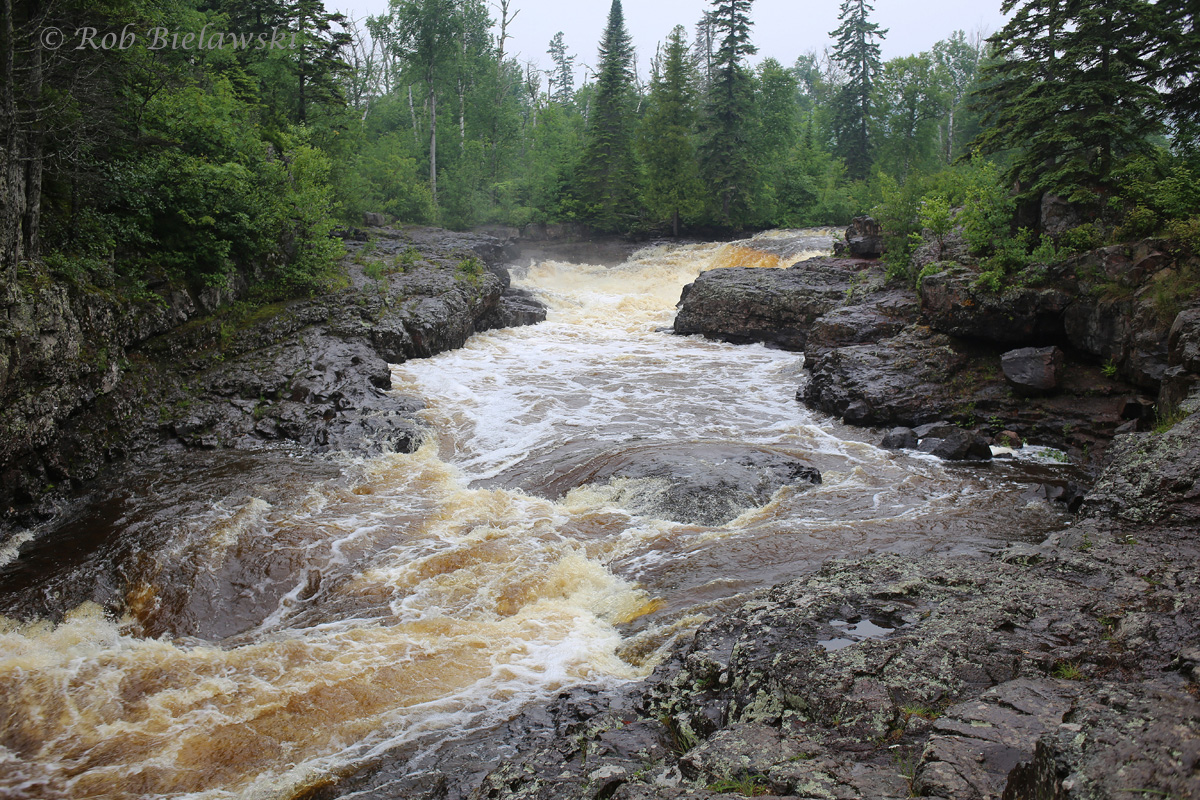 Massive volumes of water traveling through the Temperance River in northeastern Minnesota!