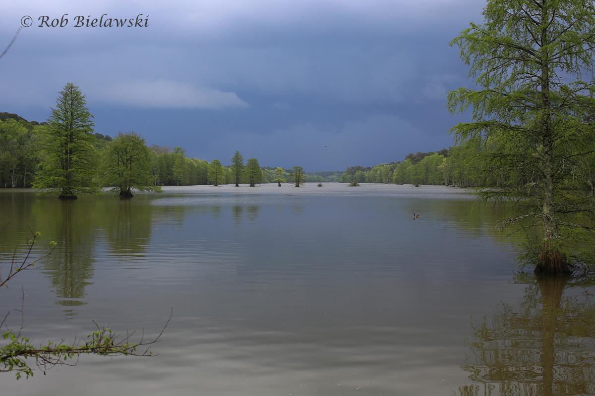 Stumpy Lake & Storm / 22 Apr 2016 / Stumpy Lake NA