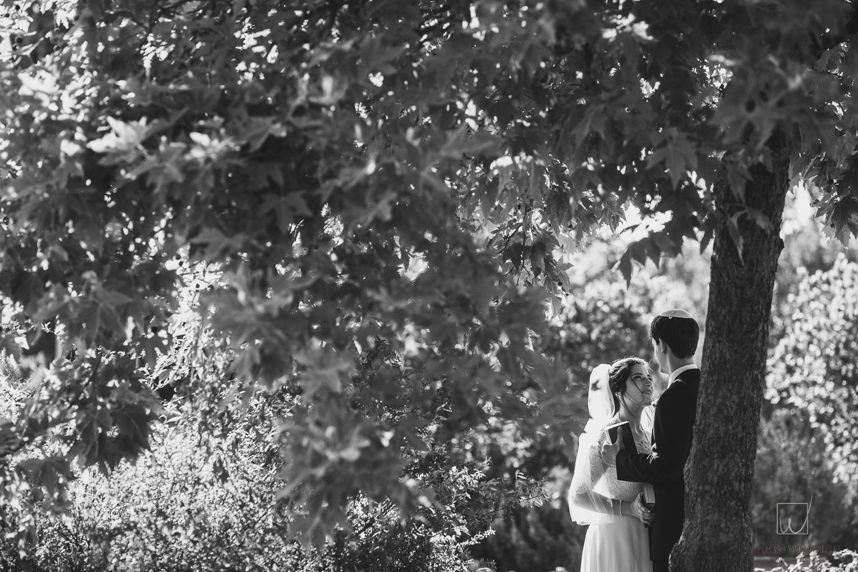 Alana & Jonah wedding_0272.jpg