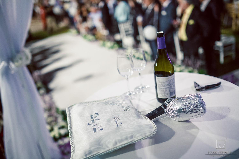 Anat & Adam wedding_567.jpg