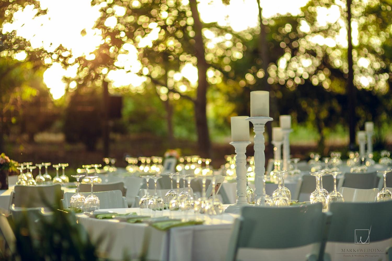 Karlos & Marina wedding_151.jpg