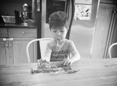 Grayson with his photo shoot earning. A lollipop and toy bugs.