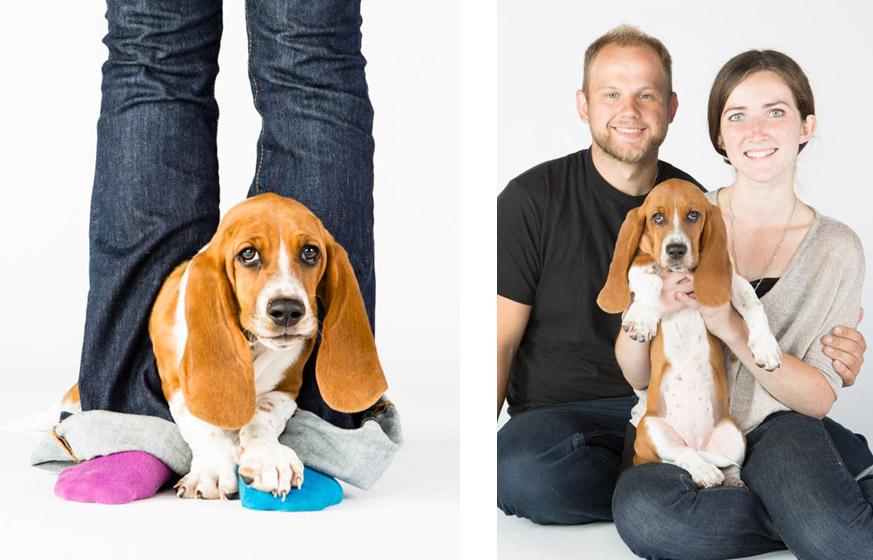 santa-barbara-pet-photographer-daisy-4 copy