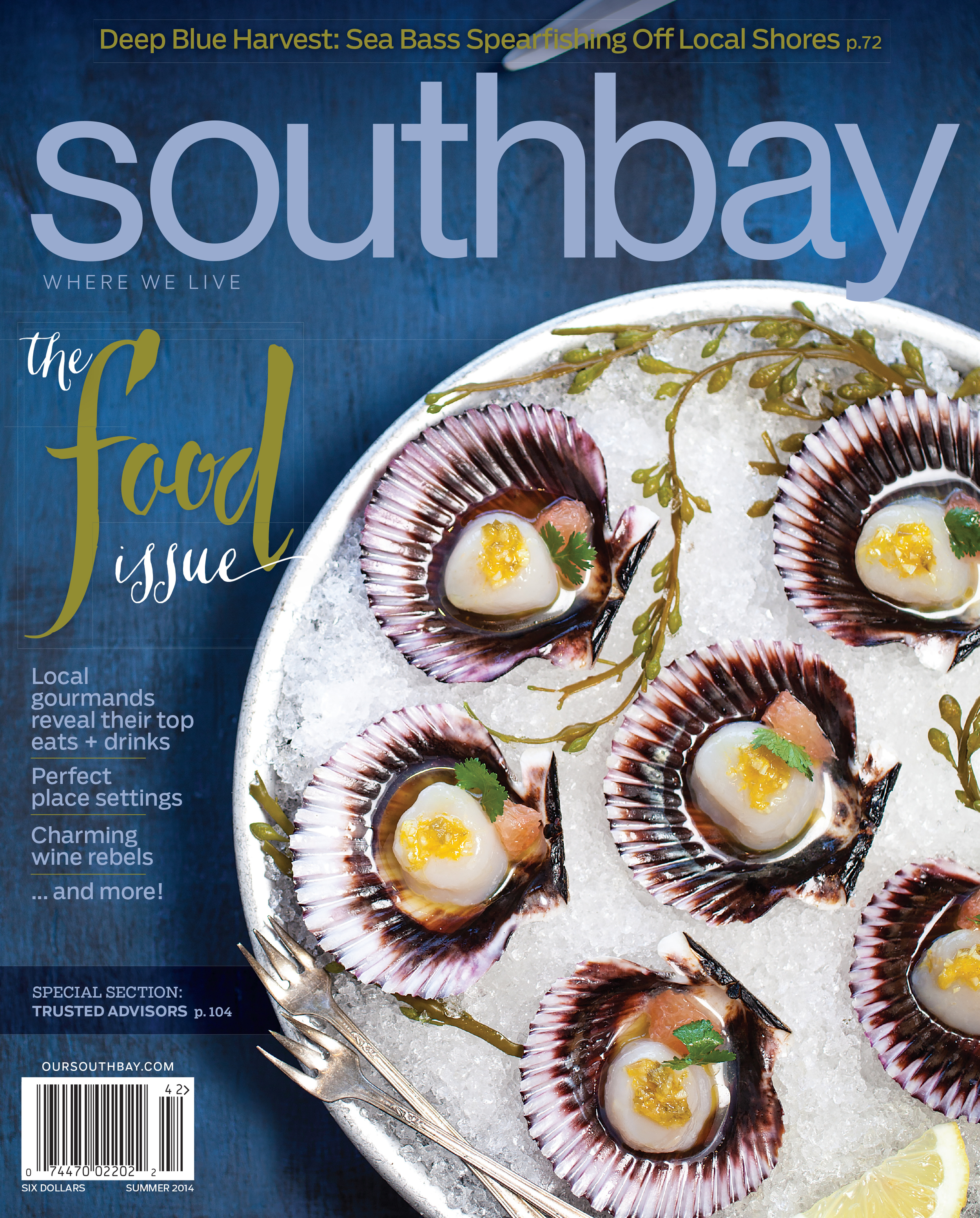 SOUTHBAY SUMMER COVER 2014